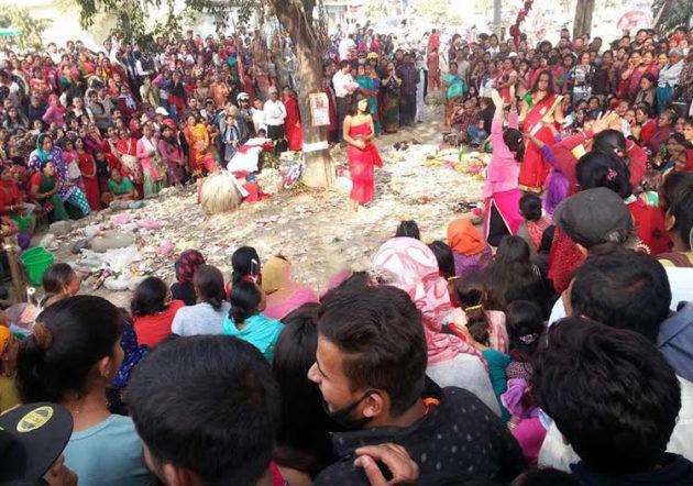 Devi-herna-bhid (1)