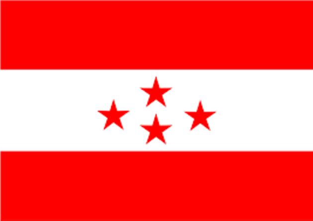 congres flag